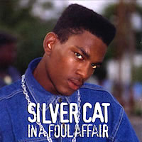 silver-cat_in-a-foul-affair